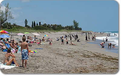 Hobe Sound Beach, Jupiter Island FLA
